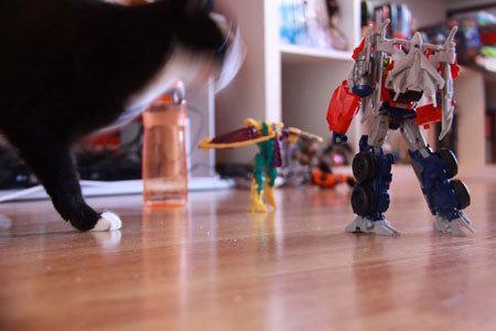 giant-cat-attacks-optimus-prime-home-animation