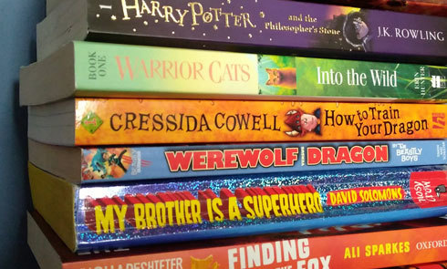 Ten-children's-book-series-that-are-great-to-re-read-cropped-Photo-by-SpanglesPlace