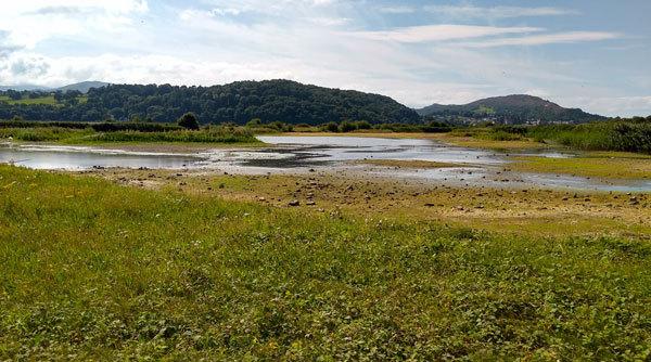 countryside-scene-illustrates-howards-end-locations-emforster-howards-end