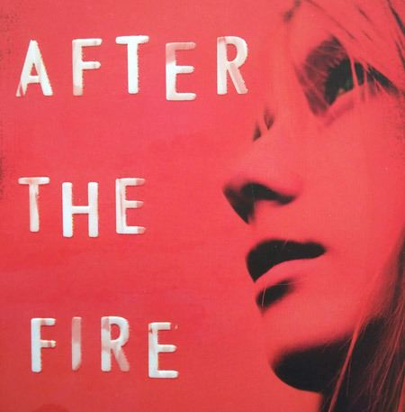 after the fire book will hill cover detail